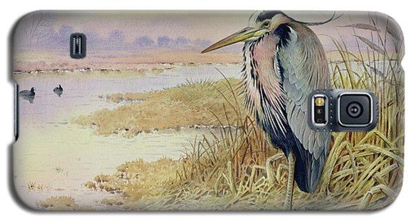 Grey Heron Galaxy S5 Case by John James Audubon