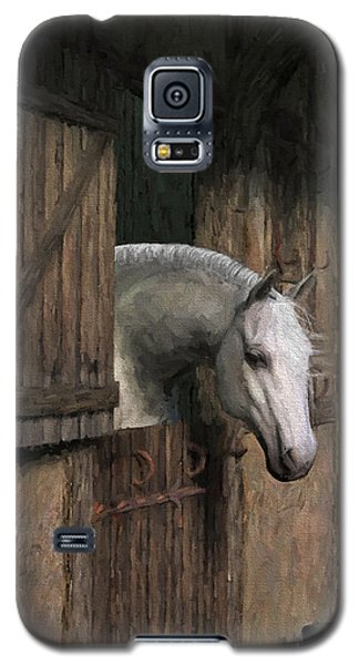 Grey Horse In The Stable - Waiting For Dinner Galaxy S5 Case by Jayne Wilson