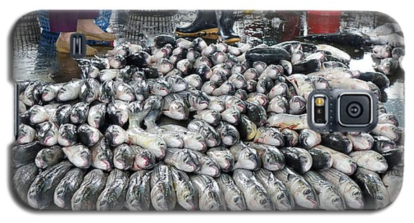 Grey Mullet Fish For Sale At The Fish Market Galaxy S5 Case by Yali Shi