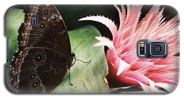 Grey Pansy Pink Bromeliad Galaxy S5 Case