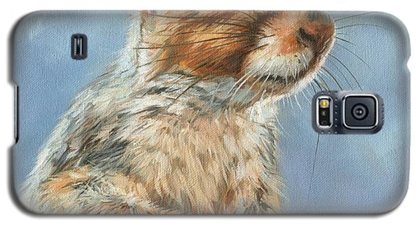 Galaxy S5 Case featuring the painting Grey Squirrel by David Stribbling