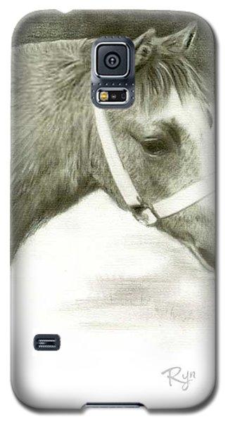 Grey Welsh Pony  Galaxy S5 Case