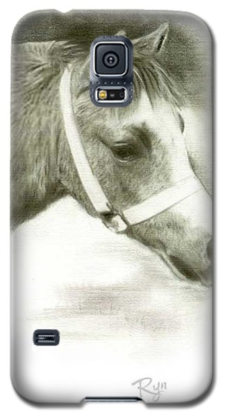 Grey Welsh Pony  Galaxy S5 Case