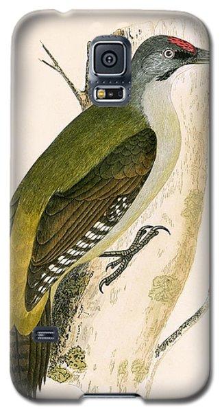 Grey Woodpecker Galaxy S5 Case by English School