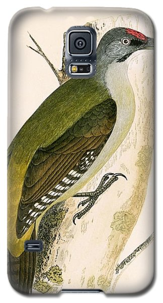 Grey Woodpecker Galaxy S5 Case