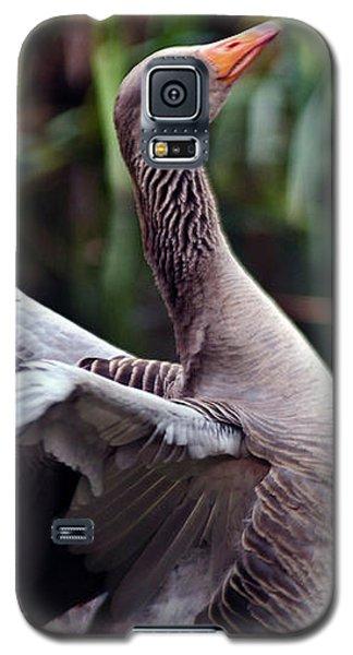 Greylag Goose Poetry Galaxy S5 Case