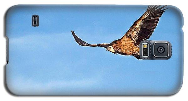 Galaxy S5 Case featuring the photograph Griffon Vulture by Meir Ezrachi