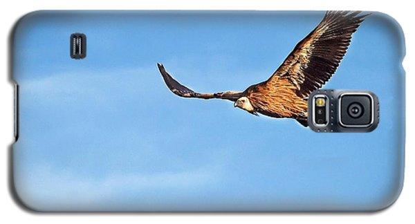 Griffon Vulture Galaxy S5 Case by Meir Ezrachi