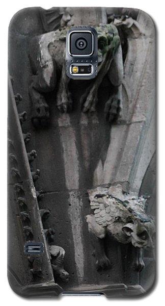 Griffons Galaxy S5 Case