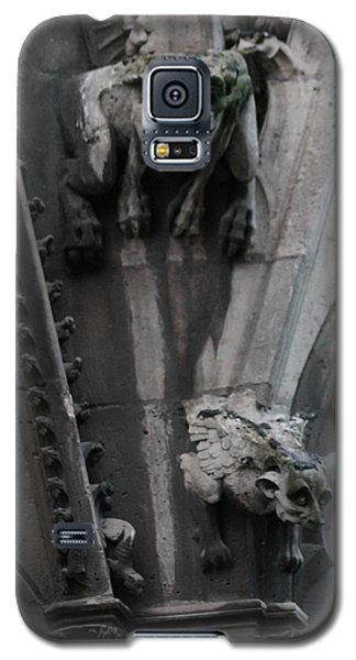 Galaxy S5 Case featuring the photograph Griffons by Christopher Kirby