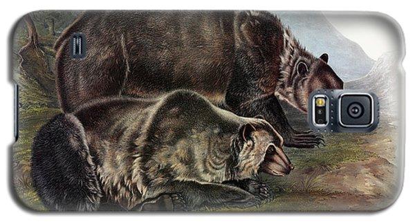 Brown Bear Galaxy S5 Case - Grizzly Bear by John James Audubon