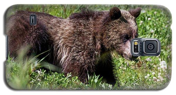 Grizzly Cub  Galaxy S5 Case