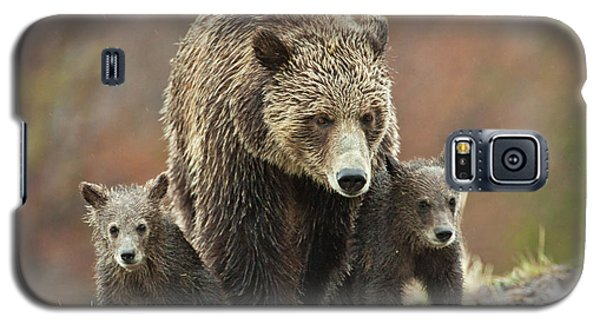 Grizzly Family Galaxy S5 Case