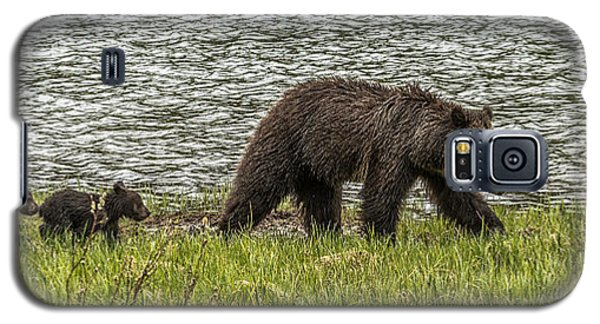 Galaxy S5 Case featuring the photograph Grizzly Family by Yeates Photography