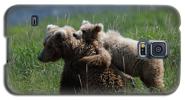Grizzly  Mother And A Cub In Katmai National Park Galaxy S5 Case