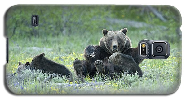 Grizzly Romp - Grand Teton Galaxy S5 Case