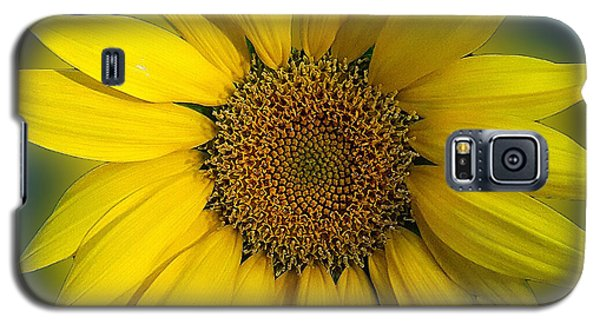 Groovy Sunflower Galaxy S5 Case
