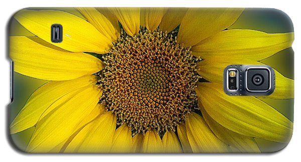 Galaxy S5 Case featuring the photograph Groovy Sunflower by Jeanne Forsythe