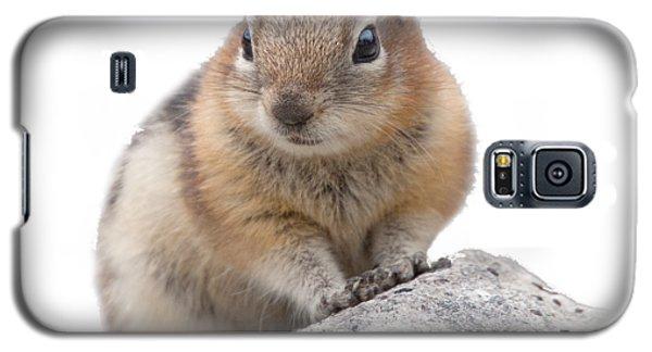 Ground Squirrel T-shirt Galaxy S5 Case