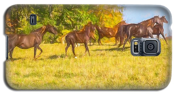 Group Of Morgan Horses Trotting Through Autumn Pasture. Galaxy S5 Case