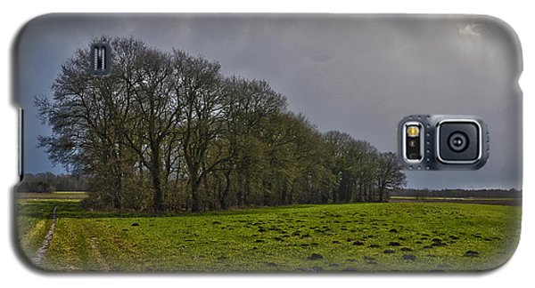Group Of Trees Against A Dark Sky Galaxy S5 Case by Frans Blok