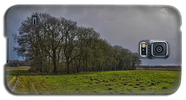 Group Of Trees Against A Dark Sky Galaxy S5 Case