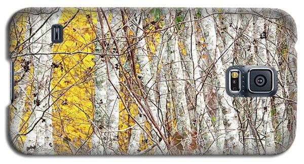 Grove 2 Galaxy S5 Case