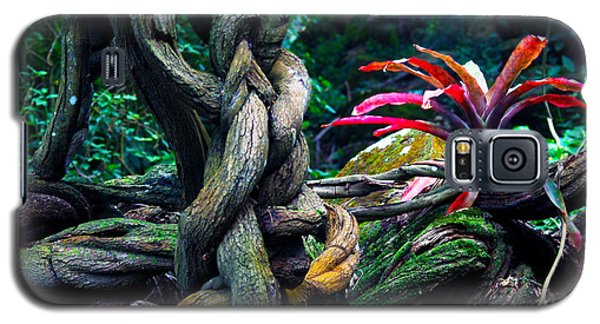 Grow Where You're Planted II Galaxy S5 Case