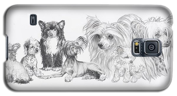 Galaxy S5 Case featuring the drawing Growing Up Chinese Crested And Powderpuff by Barbara Keith
