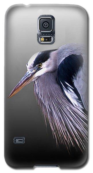 Grumpy Ole Man Galaxy S5 Case by Skip Willits