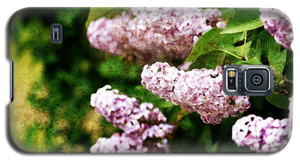 Grunge Lilacs Galaxy S5 Case
