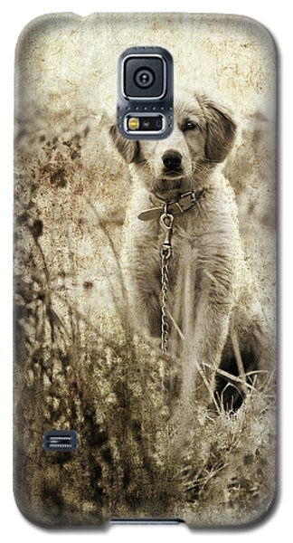 Grunge Puppy Galaxy S5 Case