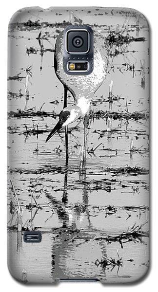 Grus Canadensis 2 Galaxy S5 Case