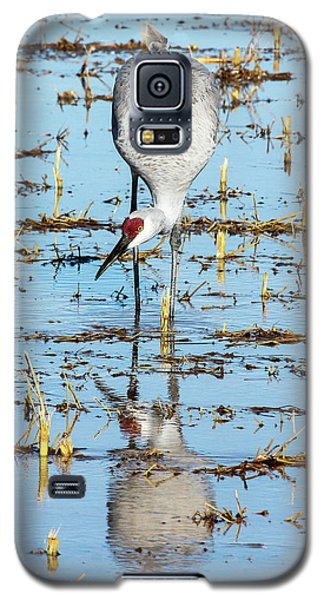 Grus Canadensis I Galaxy S5 Case