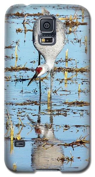 Grus Canadensis I Galaxy S5 Case