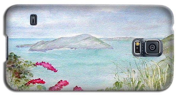 Guana Island Galaxy S5 Case
