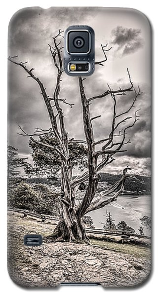 Guardian Of The Bay Galaxy S5 Case