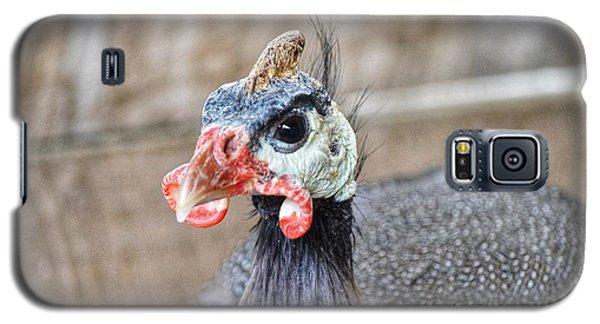 Guinea Fowl Galaxy S5 Case