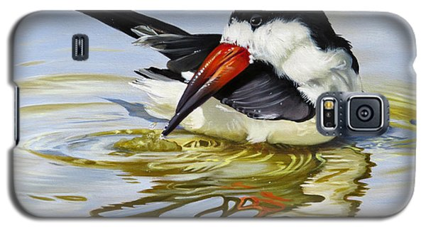 Gulf Coast Black Skimmer Galaxy S5 Case