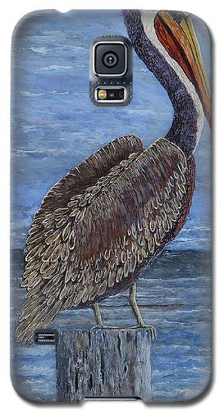 Gulf Coast Brown Pelican Galaxy S5 Case