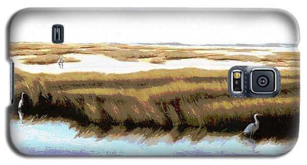 Gulf Coast Florida Marshes I Galaxy S5 Case