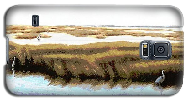 Gulf Coast Florida Marshes I Galaxy S5 Case