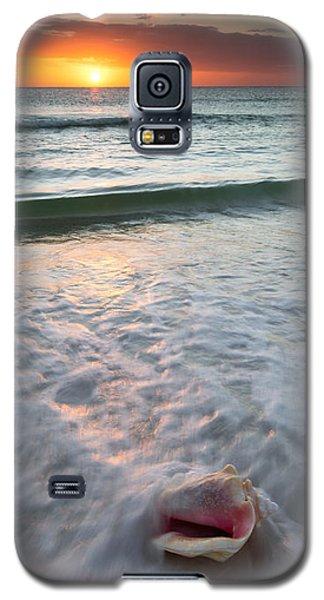 Gulf Coast Sunset  Galaxy S5 Case by Patrick Downey