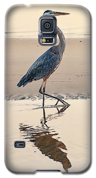 Gulf Port Great Blue Heron Galaxy S5 Case