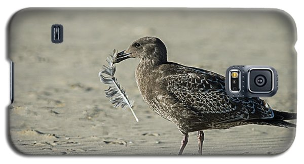 Gull And Feather Galaxy S5 Case