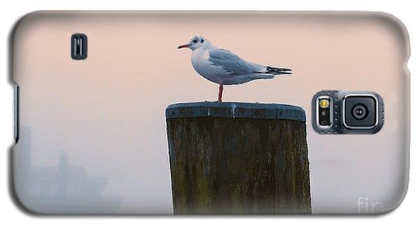 Gull And Fog Galaxy S5 Case