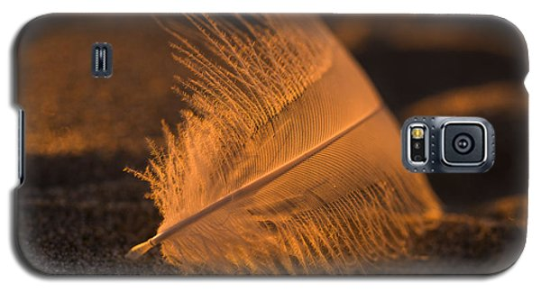 Gull Feather At Sunset Galaxy S5 Case
