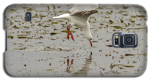 Gull Fishing 01 Galaxy S5 Case