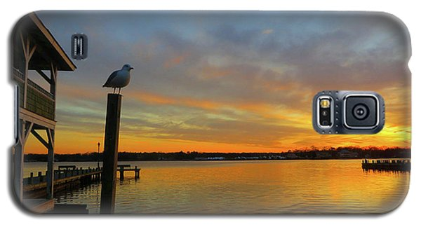 Gull Sunset Galaxy S5 Case