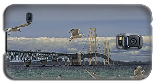 Gulls Flying By The Bridge At The Straits Of Mackinac Galaxy S5 Case